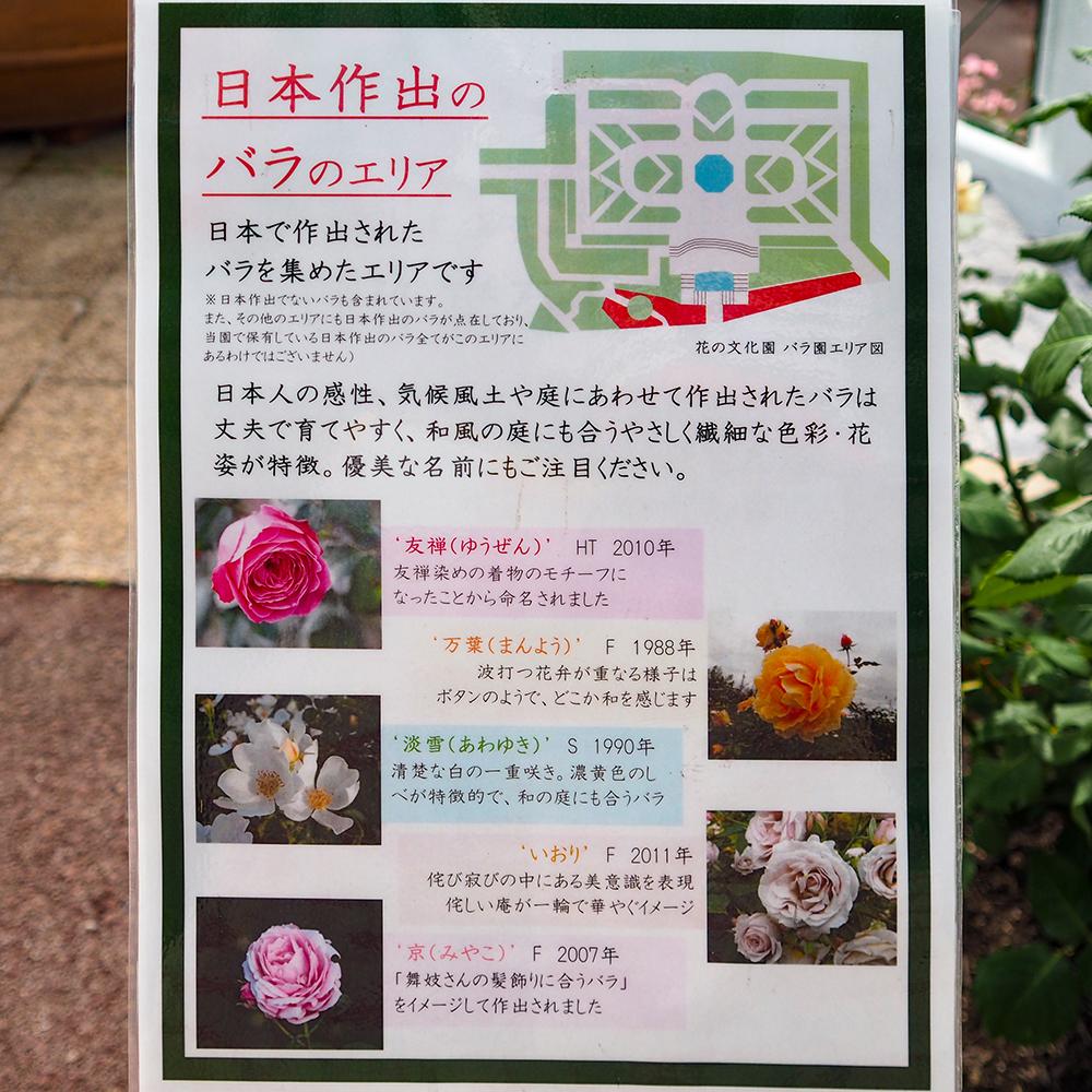 日本作出のバラのエリア