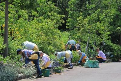 ガーデングループの作業風景