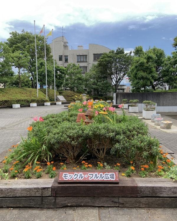 河内長野市役所植え替え