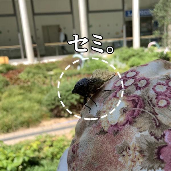 大阪南医療センター14