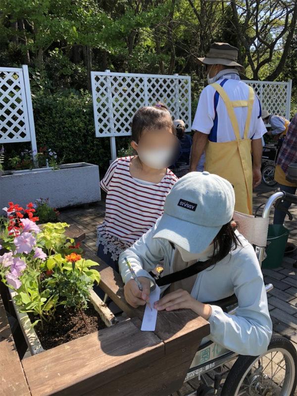 福祉花壇秋の植え替え03
