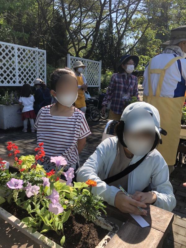 福祉花壇秋の植え替え04