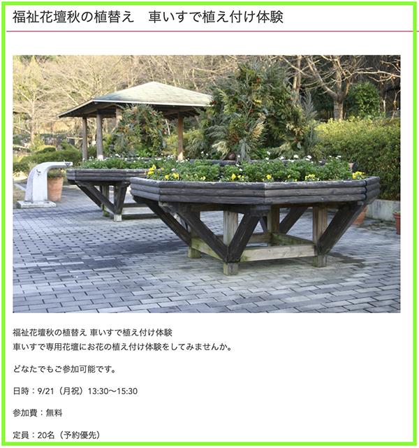 福祉花壇秋の植え替え01