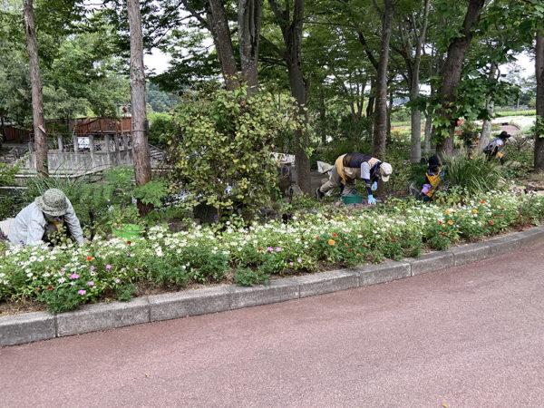 9月24日(木)活動の様子19