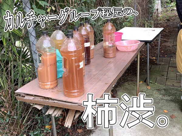 カルチャーG・柿渋染め01