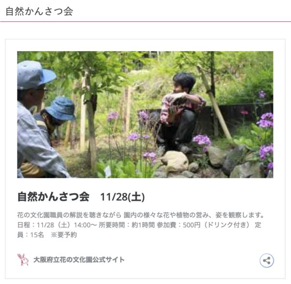 11/28自然かんさつ会