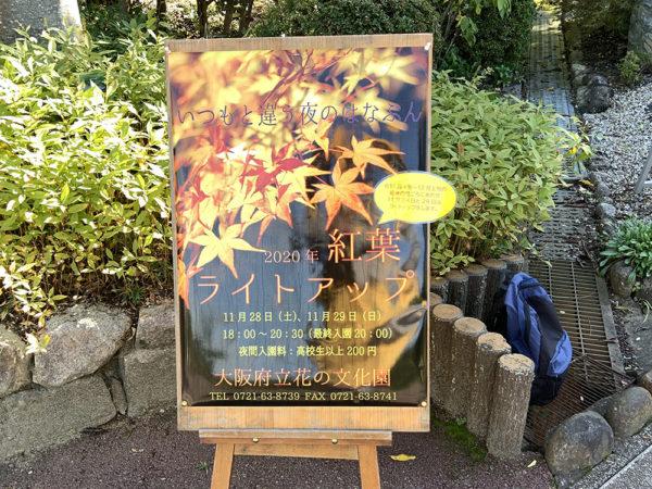 11/5モミジライトアップポスター