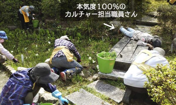 3/30カルチャーG除草の様子3