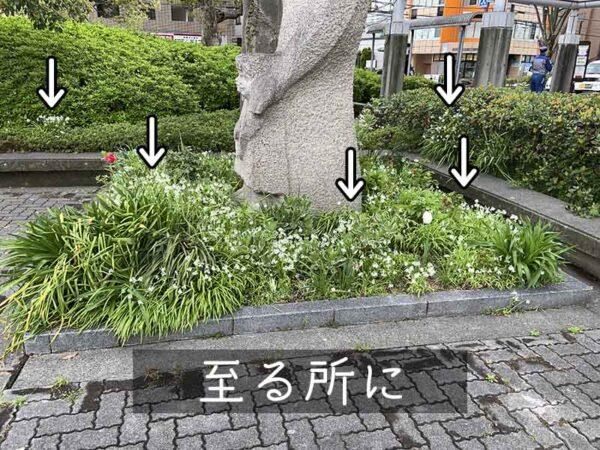 4/5河内長野市役所グループの様子16