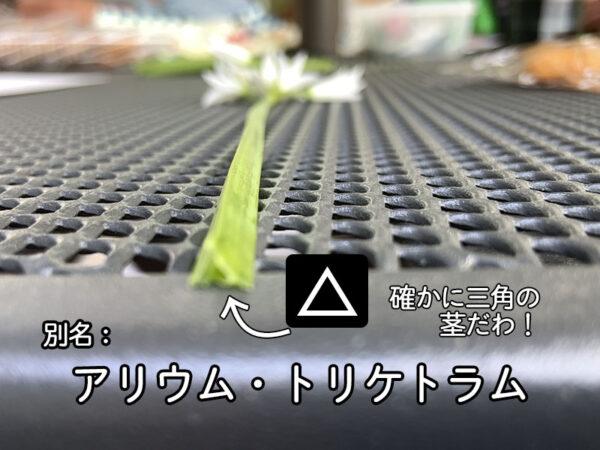 4/21大阪南医療センターの様子16