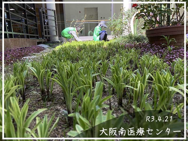 4/21大阪南医療センターの様子21