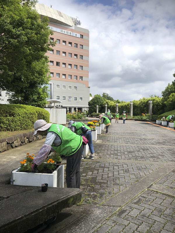 河内長野市役所ハンギング(14日)05