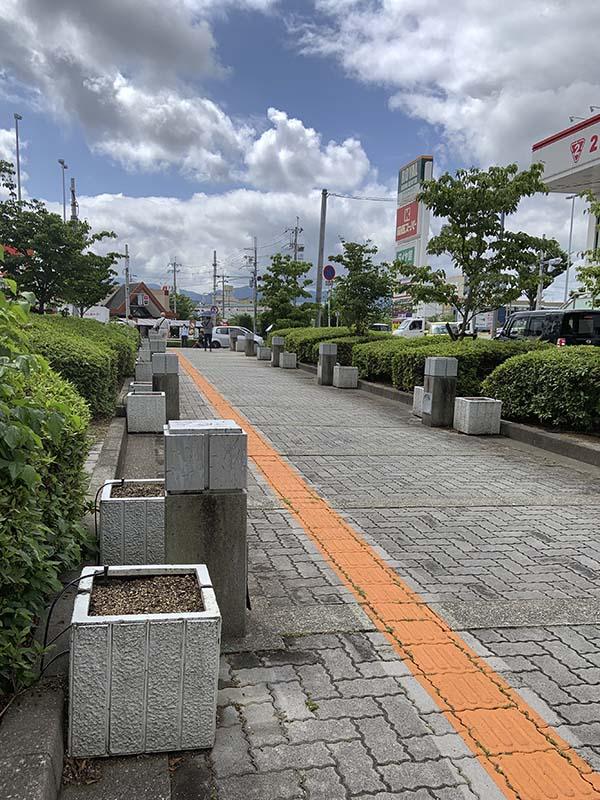 河内長野市役所ハンギング(14日)10