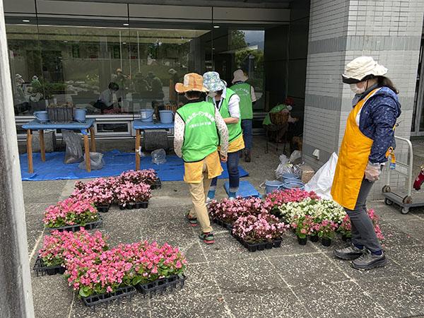 河内長野市役所ハンギング(14日)11
