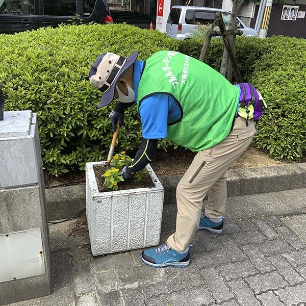 河内長野市役所植え替え最終(20日)07