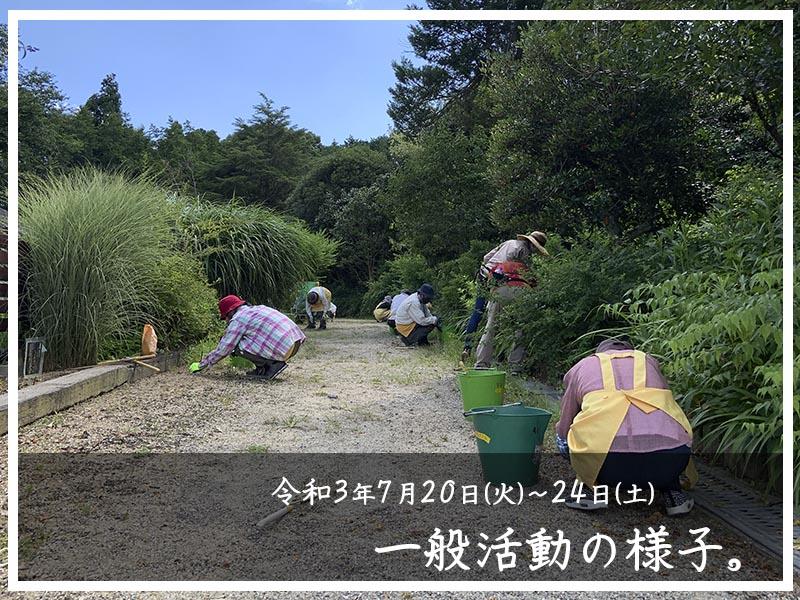 7/24一般活動の様子16