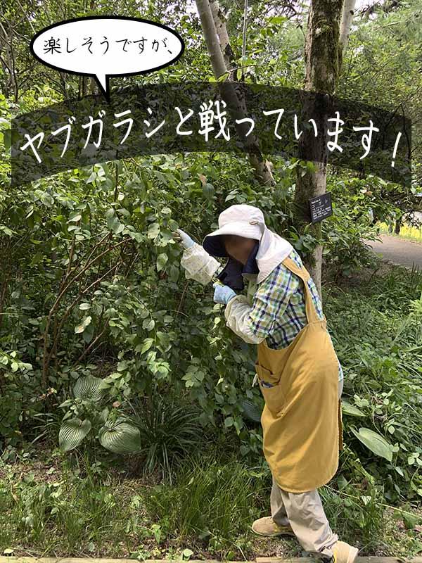 7/29一般活動の様子45